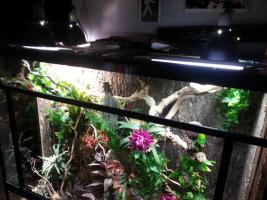 Foto 5 Großes Terrarium mit passendem Unterschrank und viel Zubehör