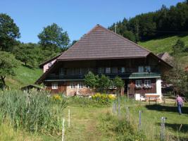 Grosses stilvoll renoviertes Schwarzwaldhaus am Fusse des Belchens