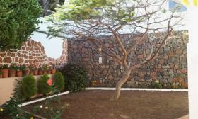 Foto 16 Grosszügiges Anwesen Teneriffa, Bajamar