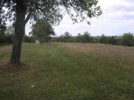 Foto 4 Grundstück