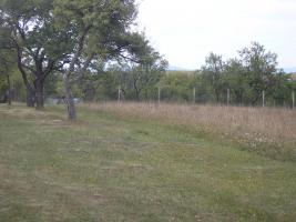 Foto 5 Grundstück