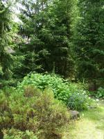 Foto 2 Grundstück in 16321 Bernau-Waldfrieden zu verkaufen