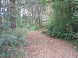 Grundstück in Fichtenwalde