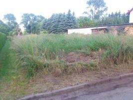Foto 2 Grundstück im Grünen