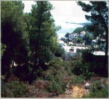 Grundstück auf der Insel Alonissos/Griechenland