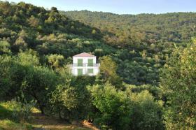 Grundstück in Italien mit Baugenehmigung