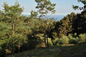 Foto 3 Grundstück in Italien mit Baugenehmigung
