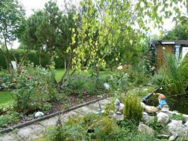 Grundstück in Kleingartenanlage