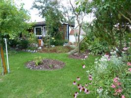 Foto 3 Grundstück in Kleingartenanlage