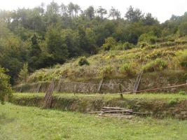 Grundstück in Ligurien - Italien zu verkaufen!