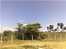 Foto 2 Grundstück am Meer - Brasilien