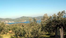 Grundst�ck mit Meeresblick nahe Galatas