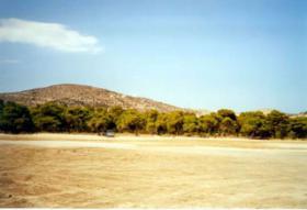 Foto 3 Grundstueck in Schinias auf Attika/Griechenland