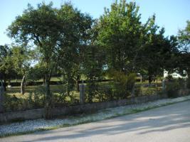 Foto 2 Grundstück in Schwarzau am Steinfeld