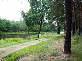 Foto 8 Grundst�ck f�r Wassersportfreunde in K�penick #Ohne Provision#
