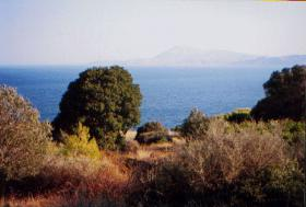 Grundst�ck nahe der Stadt Kymi/Griechenland
