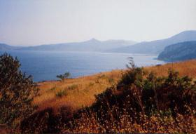 Grundstück nahe der Stadt Kymi/Griechenland
