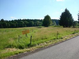 Grundstück in sonniger Lage zu verkaufen