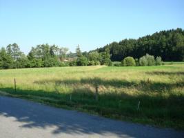 Foto 3 Grundstück in sonniger Lage zu verkaufen
