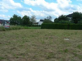 Foto 2 Grundstück  im Thermenort Stegersbach