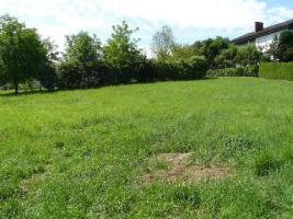 Foto 3 Grundstück  im Thermenort Stegersbach