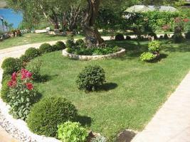 Foto 4 Gruppenhaus in Posedarje in Dalmatien direkt am Meer bestehend aus 5 Ferienwohnungen