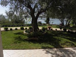 Foto 5 Gruppenhaus in Posedarje in Dalmatien direkt am Meer bestehend aus 5 Ferienwohnungen