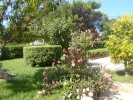 Foto 6 Gruppenhaus in Privlaka bei Zadar Ferienhaus bis zu 19 Personen