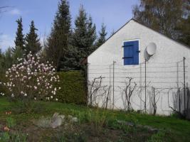 Foto 3 G�nstig in bester Lage - Wohnung, Zimmer, Ferienhaus, Zwischenmiete, Monteurzimmer