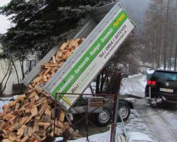 G�nstiges Brennholz ab EUR 40,00/Srm