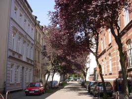 Foto 10 Gut wohnen in Ruhrort
