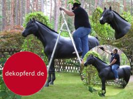 HALLO NACH HAMBURG …   Sie möchten gern mal unsere hauseigenen Deko Pferde lebensgross - Modell in den unterschiedlichsten Ausführungen kennenlernen … www.dekomitpfiff.de / Tel. 033767 - 30750 / info@dekomitpfiff.de