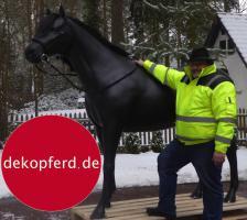 Foto 2 HALLO NACH HAMBURG …   Sie möchten gern mal unsere hauseigenen Deko Pferde lebensgross - Modell in den unterschiedlichsten Ausführungen kennenlernen … www.dekomitpfiff.de / Tel. 033767 - 30750 / info@dekomitpfiff.de