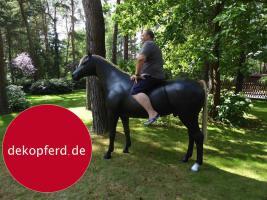 Foto 3 HALLO NACH HAMBURG …   Sie möchten gern mal unsere hauseigenen Deko Pferde lebensgross - Modell in den unterschiedlichsten Ausführungen kennenlernen … www.dekomitpfiff.de / Tel. 033767 - 30750 / info@dekomitpfiff.de