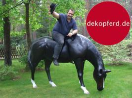 Foto 6 HALLO NACH HAMBURG …   Sie möchten gern mal unsere hauseigenen Deko Pferde lebensgross - Modell in den unterschiedlichsten Ausführungen kennenlernen … www.dekomitpfiff.de / Tel. 033767 - 30750 / info@dekomitpfiff.de