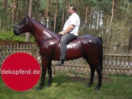 Foto 7 HALLO NACH HAMBURG …   Sie möchten gern mal unsere hauseigenen Deko Pferde lebensgross - Modell in den unterschiedlichsten Ausführungen kennenlernen … www.dekomitpfiff.de / Tel. 033767 - 30750 / info@dekomitpfiff.de
