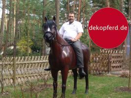 Foto 8 HALLO NACH HAMBURG …   Sie möchten gern mal unsere hauseigenen Deko Pferde lebensgross - Modell in den unterschiedlichsten Ausführungen kennenlernen … www.dekomitpfiff.de / Tel. 033767 - 30750 / info@dekomitpfiff.de