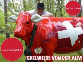 Foto 15 HALLO Mühlhausen - HALLO THÜRINGEN  - Deko Kuh lebensgross / unseres hauseigenes Modell - Liesel von der Alm oder unseres hauseigenes Holstein - Friesian Deko Kuh lebensgross - Modell oder ... www.dekomitpfiff.de / Tel. 033767 - 30750