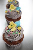HAUSGEMACHT: Cupcakes in tausendundeins Variationen...einfach köstlich !... und auch optisch ein Genuß !