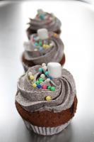 Foto 3 HAUSGEMACHT: Cupcakes in tausendundeins Variationen...einfach köstlich !... und auch optisch ein Genuß !