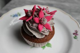 Foto 9 HAUSGEMACHT: Cupcakes in tausendundeins Variationen...einfach köstlich !... und auch optisch ein Genuß !