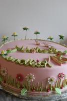 Foto 12 HAUSGEMACHT: Geburtstags - Überraschungs - Torten, die besondere Geschenkidee für besondere Menschen und besondere Gelegenheiten !