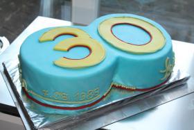 Foto 17 HAUSGEMACHT: Geburtstags - Überraschungs - Torten, die besondere Geschenkidee für besondere Menschen und besondere Gelegenheiten !