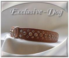 Foto 2 Halsband '' Fawn Brown '' made by Exclusive-Dog