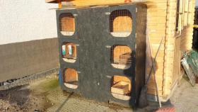 Hasenstall Kaninchenstall f�r bis zu 6 Hasen mit 1 Hase