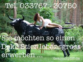 Foto 5 Hasste schon gehört es gibt jetzt die Irische … was Irische … Holstein Deko Kuh Collection … wenn ich es Dir sage ...