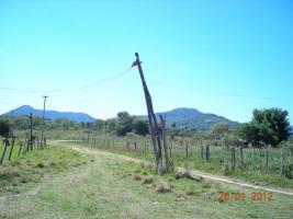Foto 3 Haus mit Gästehaus in Paraguay Südamerika