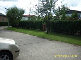Foto 11 Haus mit Garten (Pachtgrundstück)