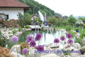 Foto 3 Haus mit Pferdestall im Süd-Schwarzwald