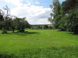 Haus mit ca. 3100 qm großem Grundstück (Provisionsfrei von privat)